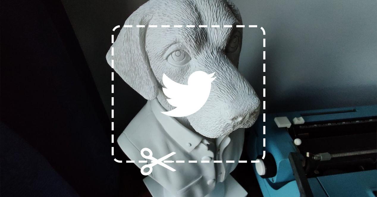 Recorte imagenes Twitter
