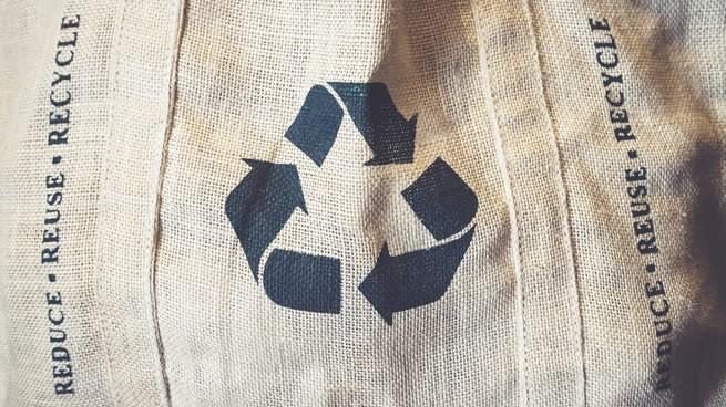 negocios ecológicos